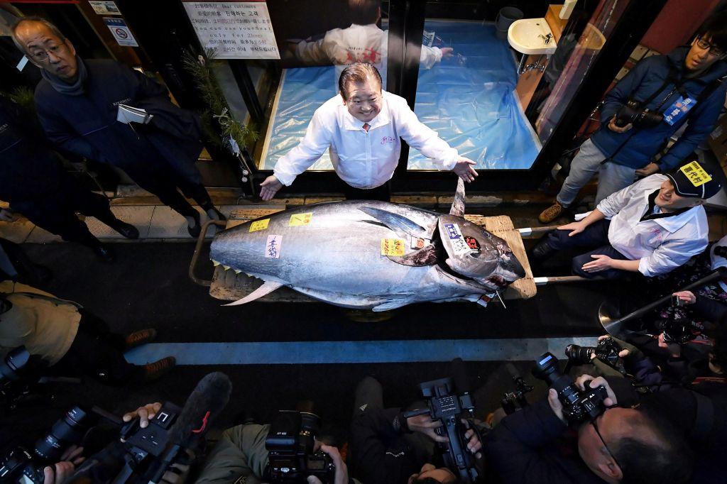 Il tonno più caro del mondo