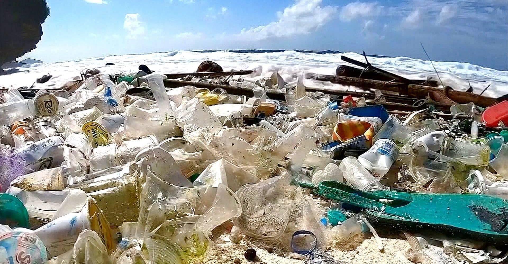 La denuncia WWF: nel Mediterraneo 5 kg di plastica al giorno ogni km di costa