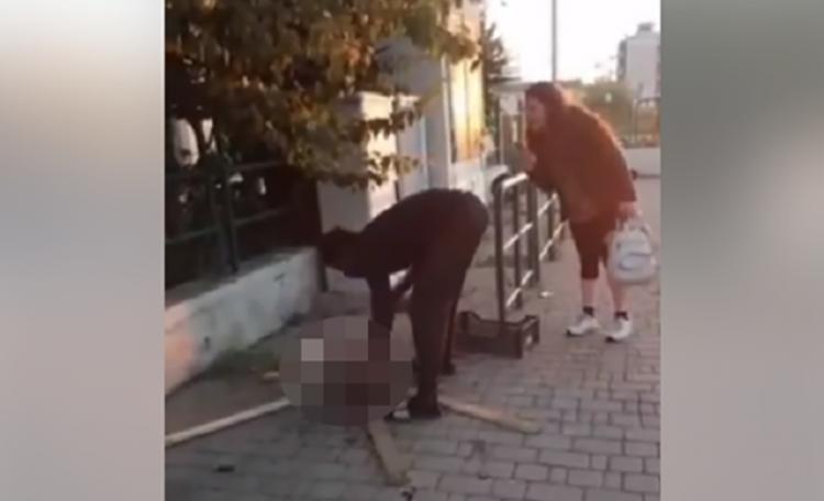 Uccide un gatto e lo cucina in strada, atrocità a Livorno
